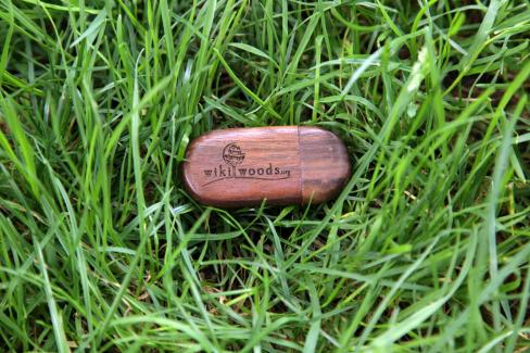 First Prize: Exclusive WikiWoods 8MB USB-Stick